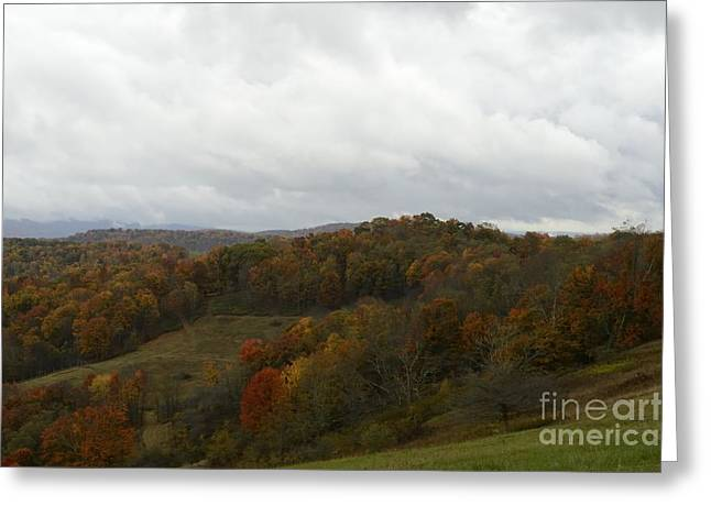 Randolph County Wv Greeting Cards -  Sully Road Greeting Card by Randy Bodkins
