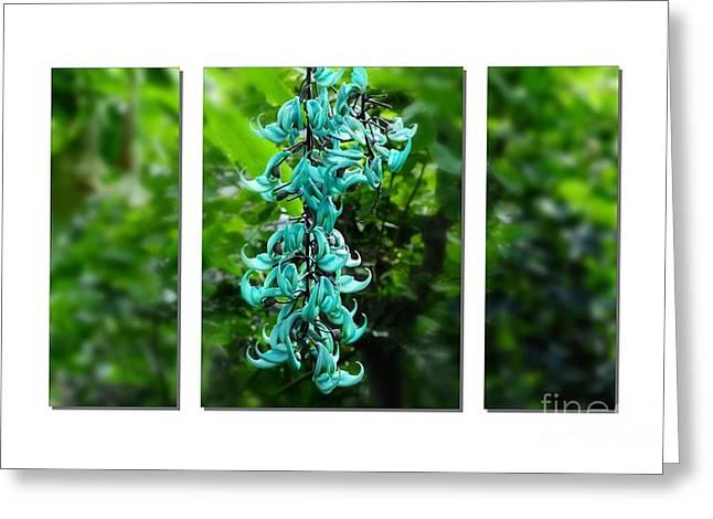 Jade Vine Greeting Cards -  Turquoise Jade Vine  Greeting Card by Elaine Manley