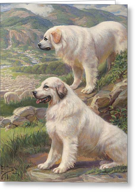 National Geographic Society Art Greeting Cards - 02, 12/27/06, 444 Pm, Greeting Card by National Geographic