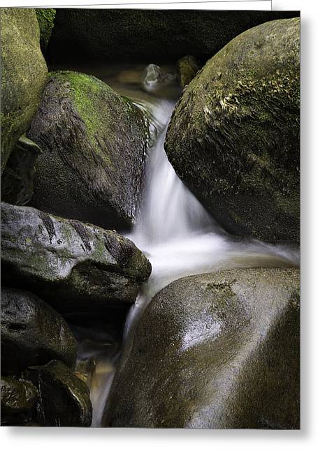 Waterfall Greeting Cards - 0706-0138 Smith Creek Rocks Greeting Card by Randy Forrester