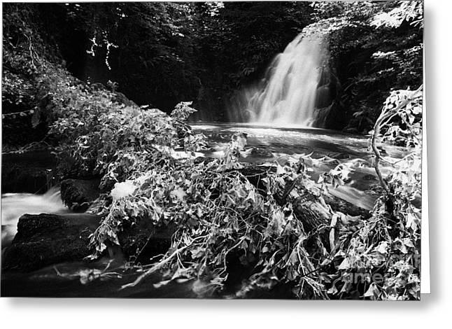 Flooding Greeting Cards -  Gleno or Glenoe Waterfall beauty spot county antrim northern ireland Greeting Card by Joe Fox