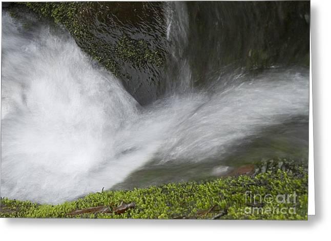 Waterfall Greeting Card by Odon Czintos