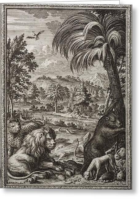 Creationism Greeting Cards - 1731 Johann Scheuchzer Creation 6th Day Greeting Card by Paul D Stewart