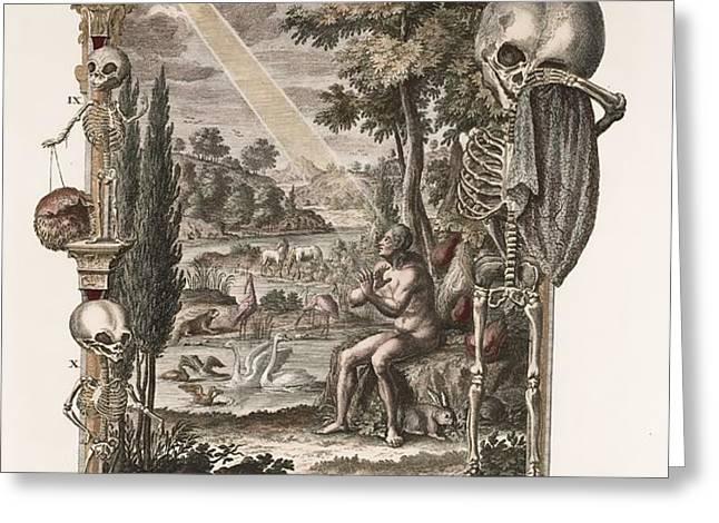 1731 Johann Scheuchzer Creation Of Man Greeting Card by Paul D Stewart
