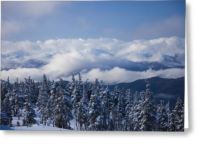 Getting Air Greeting Cards - A Beautiful Winter Scene From Atop Greeting Card by Taylor S. Kennedy
