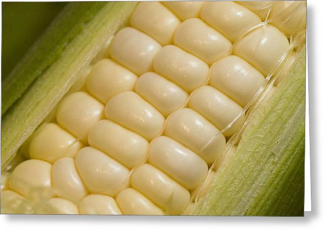 Corn On The Cob Greeting Cards - A Close View Of Corn Greeting Card by Taylor S. Kennedy