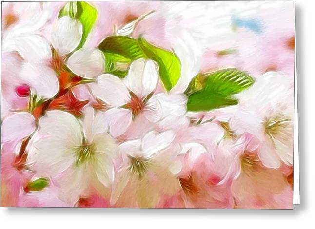 Cherry Blossoms Pastels Greeting Cards - A day in spring Greeting Card by Stefan Kuhn