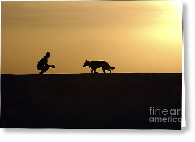 Knelt Photographs Greeting Cards - A Military Working Dog And His Handler Greeting Card by Stocktrek Images