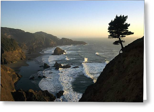 Samuel Greeting Cards - A Scenic View Of The Oregon Coast Greeting Card by Phil Schermeister