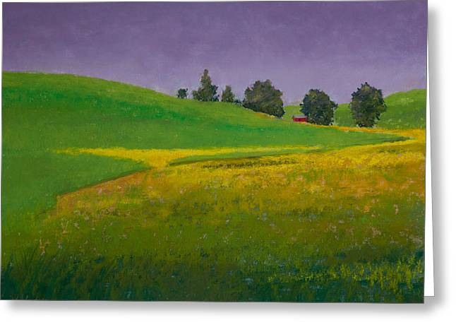 Barn Pastels Greeting Cards - A Sliver of Canola Greeting Card by David Patterson