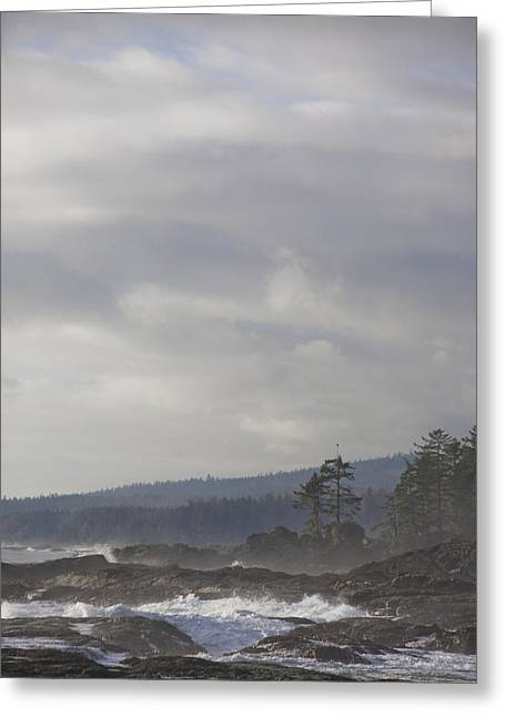 Rocks. Tidal Pool Greeting Cards - A Stormy Day On Vancouver Islands West Greeting Card by Taylor S. Kennedy