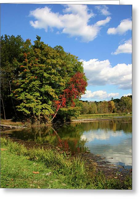 Kendall Greeting Cards - A Touch of Autumn Greeting Card by Kristin Elmquist
