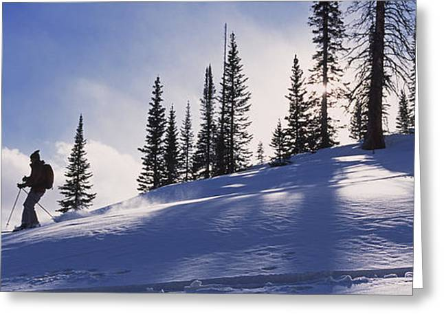 Model Colorado Greeting Cards - A Woman Enjoys Backcountry Skiing Greeting Card by Bill Hatcher