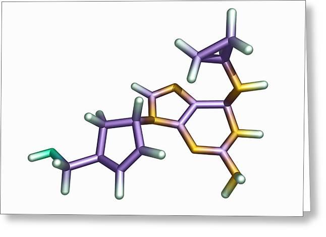 Drug Molecule Greeting Cards - Abacavir Aids Drug Molecule Greeting Card by Dr Tim Evans