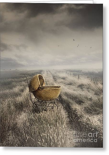 Missing Child Photographs Greeting Cards - Abandoned antique baby carriage in field Greeting Card by Sandra Cunningham