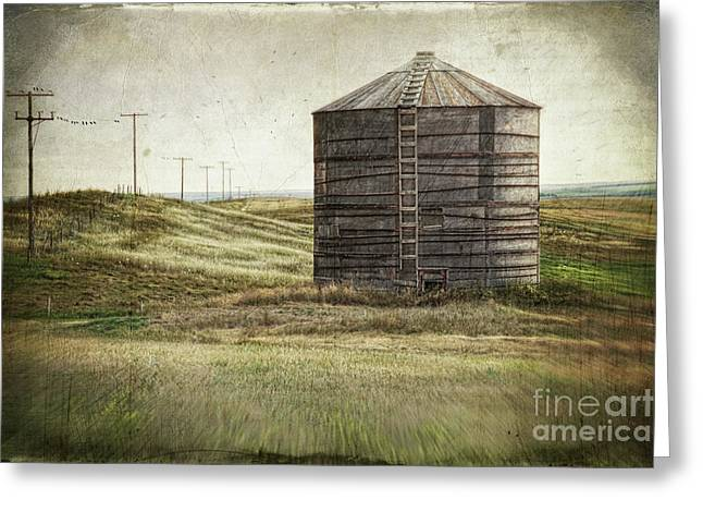 Saskatchewan Prairies Greeting Cards - Abandoned wood grain storage bin in Saskatchewan Greeting Card by Sandra Cunningham