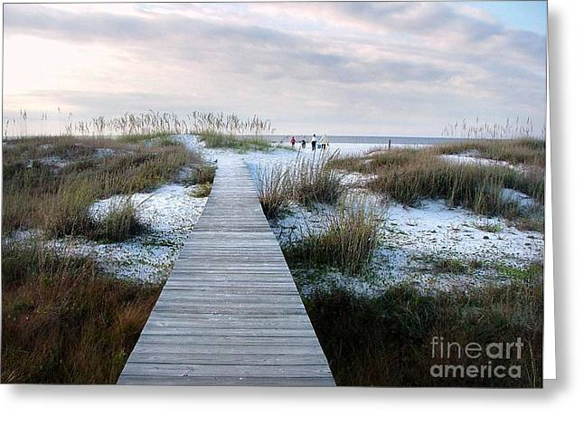 Across the Dunes Greeting Card by Julie Dant