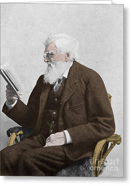 Anthropologists Greeting Cards - Alfred Russel Wallace, Welsh Naturalist Greeting Card by Science Source