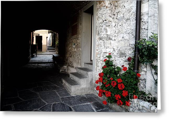 Alley Stairs Greeting Cards - Alley with arches Greeting Card by Mats Silvan