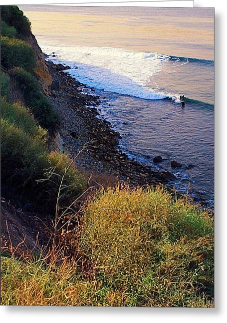 Palos Verdes Cove Greeting Cards - Alone in the Cove Greeting Card by Ron Regalado