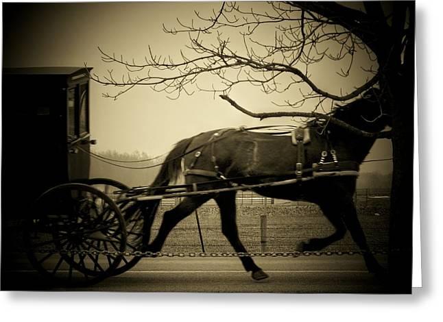 Amish Greeting Cards - Amish Buggy  Greeting Card by Michael L Kimble