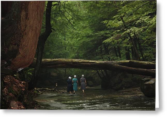 Mb Matthews Greeting Cards - Amish Creek Hike Greeting Card by MB Matthews