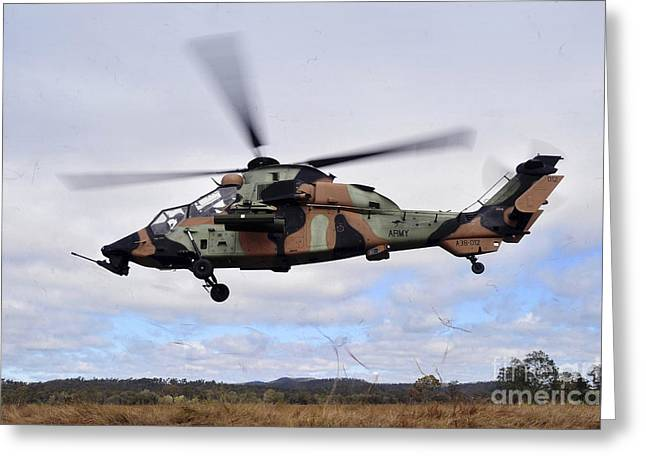 The Tiger Greeting Cards - An Australian Army Tiger Helicopter Greeting Card by Stocktrek Images