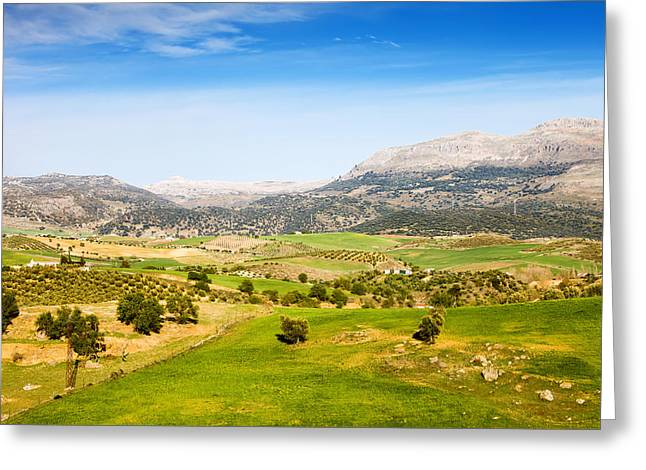 Southern Province Greeting Cards - Andalusia Landscape in Spain Greeting Card by Artur Bogacki