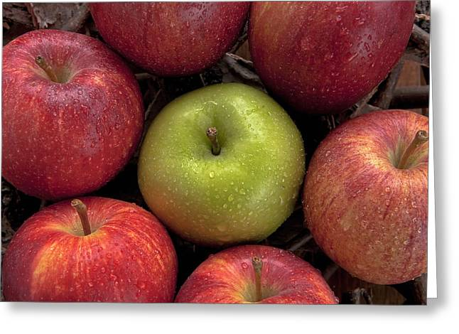 Apple Photographs Greeting Cards - Apples Greeting Card by Joana Kruse
