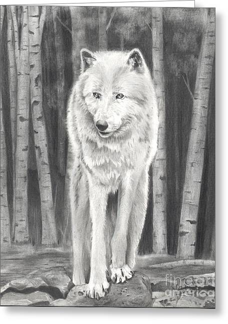 Arctic Wolf Greeting Card by Christian Conner