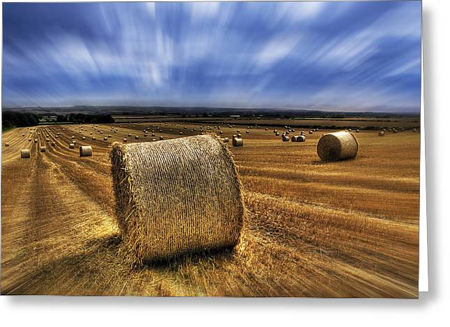 Hay Bales Greeting Cards - August Field Greeting Card by Svetlana Sewell
