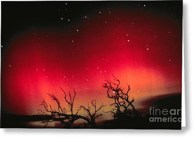 Winter Night Greeting Cards - Aurora Australis, Southern Lights Greeting Card by Science Source