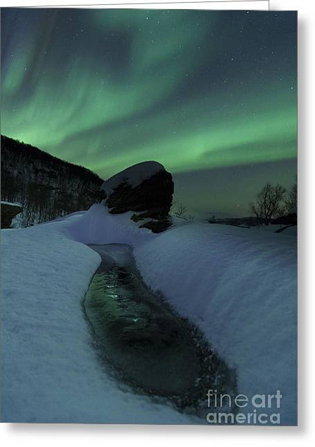 Nordland County Greeting Cards - Aurora Borealis Over A Frozen River Greeting Card by Arild Heitmann