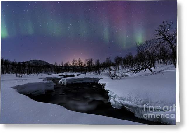 Winter Night Greeting Cards - Aurora Borealis Over Blafjellelva River Greeting Card by Arild Heitmann