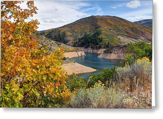 Autumn At Causey Reservoir - Utah Greeting Card by Gary Whitton