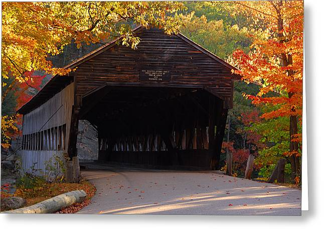 Photogrpah Greeting Cards - Autumn Bridge Greeting Card by William Carroll