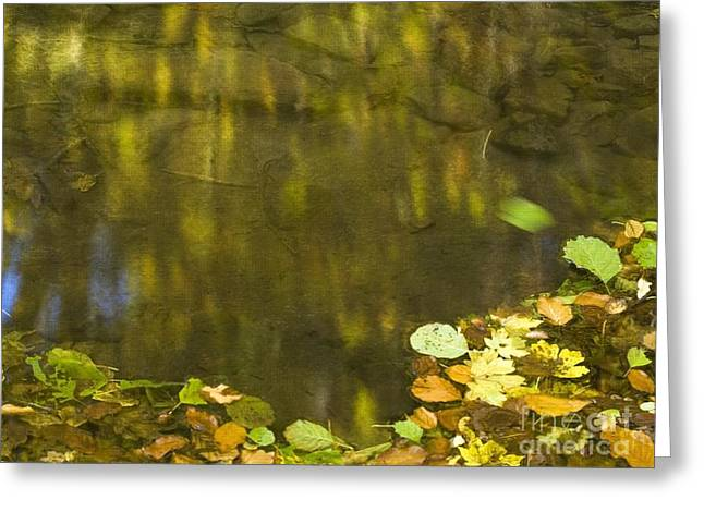 Hayrick Greeting Cards - Autumn colors Greeting Card by Odon Czintos
