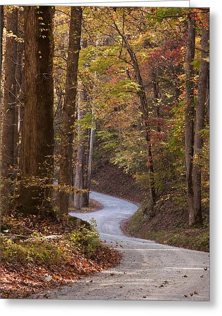 Fall Photos Greeting Cards - Autumn Drive Greeting Card by Andrew Soundarajan