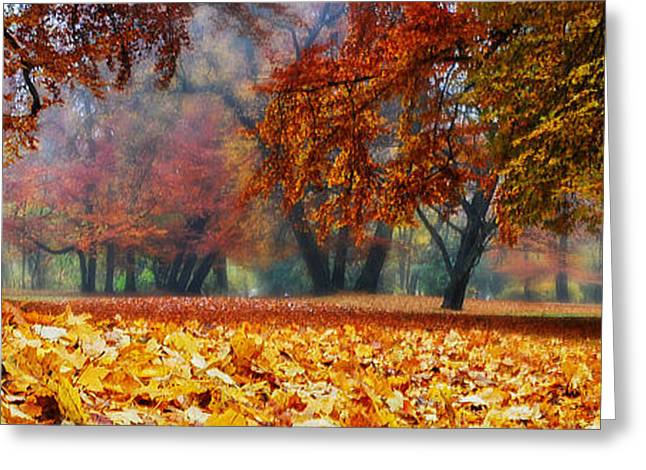 Hannes Cmarits Greeting Cards - Autumn In The Woodland Greeting Card by Hannes Cmarits