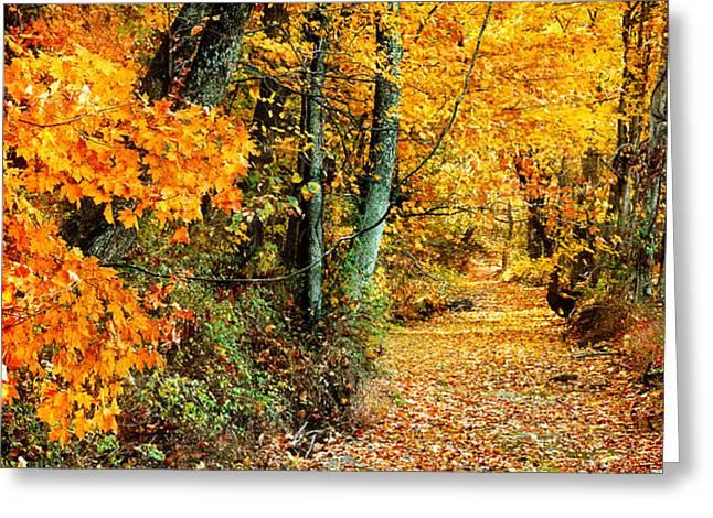 Autumn Pathway Greeting Card by Cheryl Davis