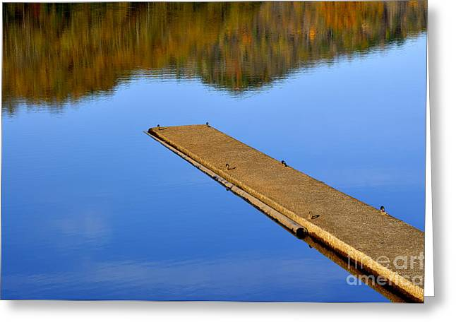 Man-made Lake Greeting Cards - Autumn Reflections Greeting Card by Thomas R Fletcher