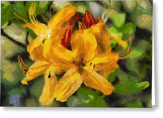 """digital Art"" Greeting Cards - Azaleas in bloom Greeting Card by Fran Woods"