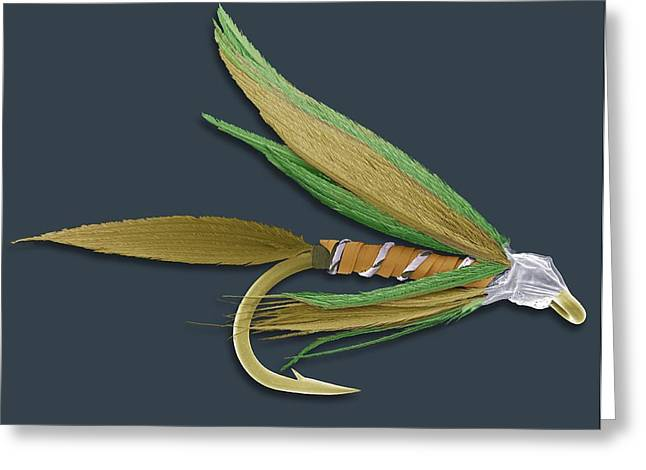 Barbed Fishing Fly, Sem Greeting Card by Steve Gschmeissner
