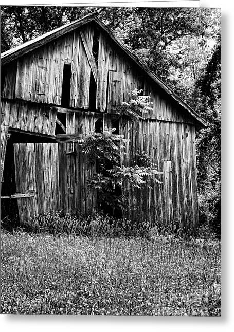 Scenic Farms Greeting Cards - Barn Greeting Card by HD Connelly