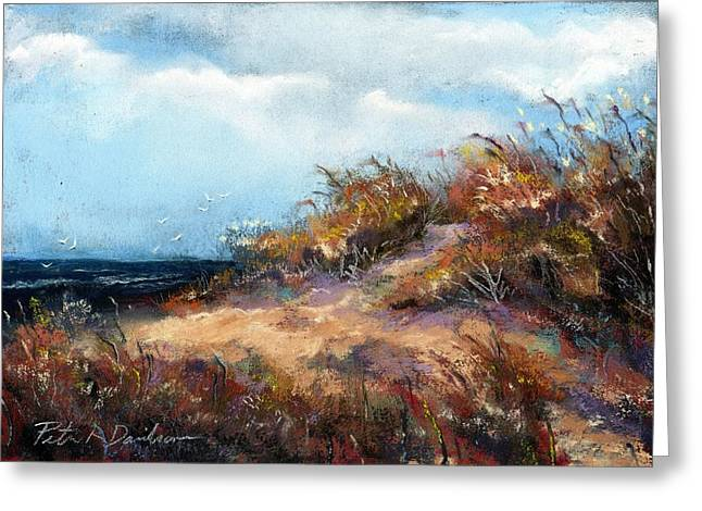 Beach Dune 2 Greeting Card by Peter R Davidson