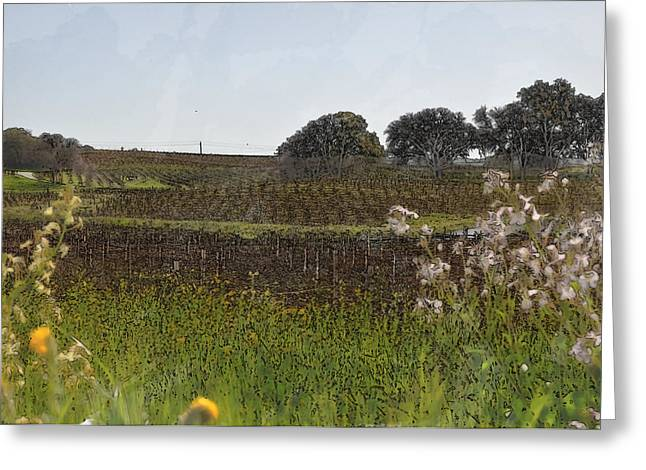 Beautiful California Vineyard Framed With Flowers Greeting Card by Brandon Bourdages