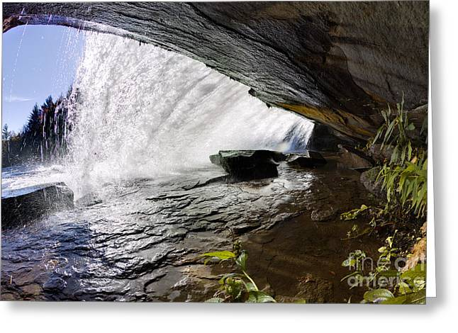 Behind Bridal Veil Falls In Dupont State Park Nc Greeting Card by Dustin K Ryan