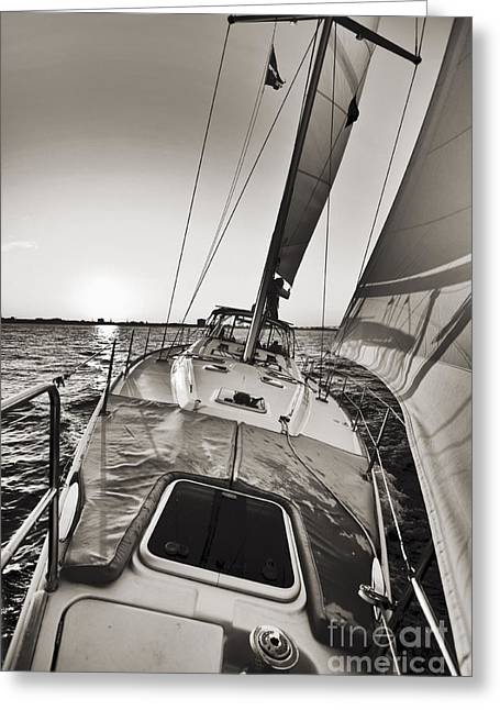 Sailing Yacht Greeting Cards - Beneteau 49 Sailing Yacht Close Hauled Charleston Sunset Sailboat Greeting Card by Dustin K Ryan
