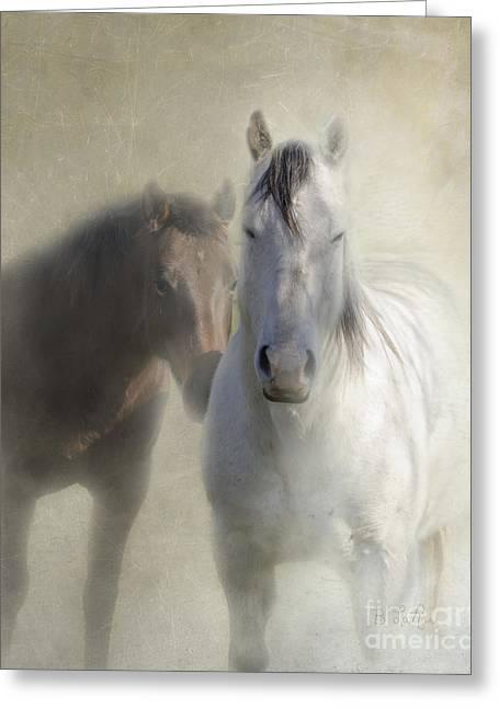 Quarterhorses Greeting Cards - Best Friends Greeting Card by Betty LaRue