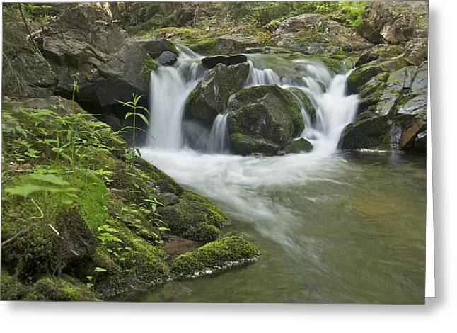 Yellow Dog River Greeting Cards - Big Pup Falls 3 Greeting Card by Michael Peychich